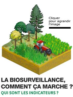 Bio-indicateurs de la qualité de l'Air, selon l'ADEME